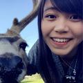 Avatar for April Yang