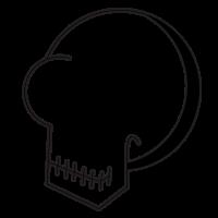 Skull Icon 15306