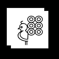 Peacock Icon 260918