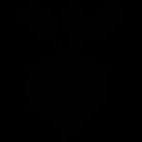Turnip Icon 3024